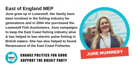 Brexit Party East of England MEP June Mummery