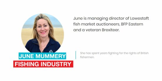 Brexit Party June Mummery MEP