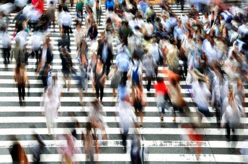 Crowds Pedestrians