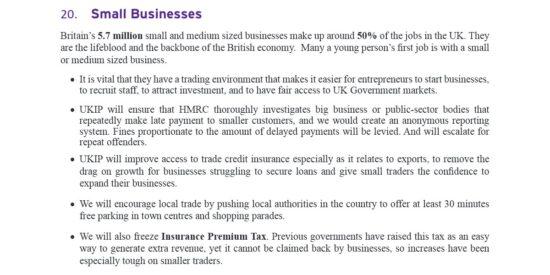 UKIP Manifesto Small Businesses