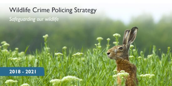 Wildlife Crime Policing Strategy 2018-2021